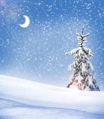 冬の森。冬の風景. — ストック写真