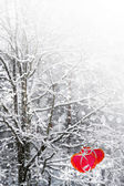 Trees in the snow. Heart. — Stock Photo