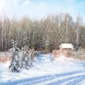 Wsi w lesie zimą — Zdjęcie stockowe