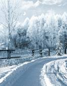 Winter in the village — Stock Photo