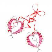 Розовый кровоточащее сердце цветок — Стоковое фото
