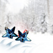 Christmas toys. winter forest — Stock Photo #59744573