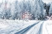 Vintern skog. vinterlandskap. — Stockfoto