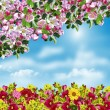 Branch of the cherry blossoms against the blue sky with clouds — Stock Photo #62694799