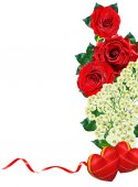 Red roses isolated on white background — Stock Photo