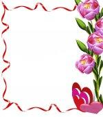 Tulips flowers isolated on white background — Stock Photo