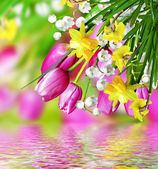 Spring flowers tulips and lilies of the valley — Stock Photo