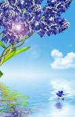Hyacinth flowers on a background of blue sky with clouds — Stock Photo