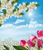 Wiosenne kwiaty, konwalie i tulipany przeciwko sk niebieski — Zdjęcie stockowe
