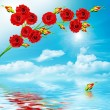Branch red roses on a background of blue sky with clouds — Stock Photo #64644595