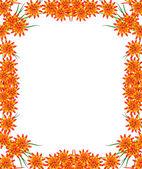 Рама Цветы лилии — Стоковое фото