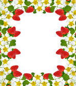Frame with berries and flowers of strawberry — Photo