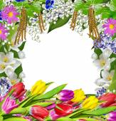 Spring flowers. frame — Stock Photo