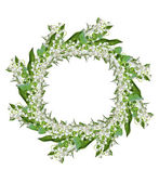 Oddział Lilie kwiatów doliny, na białym tle na biały bac — Zdjęcie stockowe