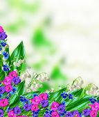 цветочный фон — Стоковое фото