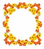 Round frame with nasturtium flowers — Stock Photo