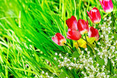 Spring flowers daffodils and tulips. lily of the valley — Stock Photo