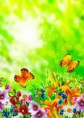 Paisaje de verano. Flores y mariposas — Foto de Stock