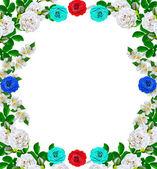 Dog rose (Rosa canina) flowers on a white background. jasmine — Stock Photo