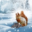 The squirrel in the winter woods. New Year card. — Stock Photo #76652059