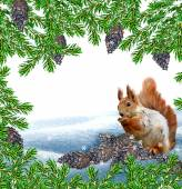 The squirrel in the winter woods. New Year card. — Stock Photo