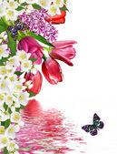 Flowers tulips and lilacs. jasmine — Stock Photo