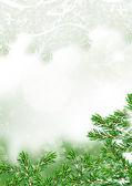 スプルースの枝にクリスマス グッズ — ストック写真