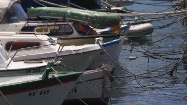 Boats in Rovinj Harbor — Stock Video
