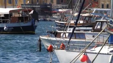 Boats in Rovinj Harbor — Stock Video