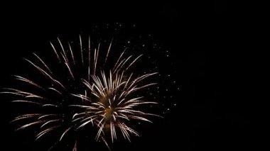 Firework display — Stock Video