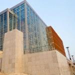 Modern building — Stock Photo #55883987