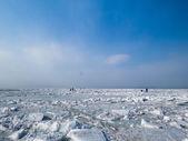 Ledová poušť — Stock fotografie