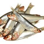 Постер, плакат: Fresh Fish Sprats