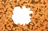 Cork Tile Background — Stock Photo