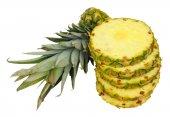 Fresh Sliced Pineapple — Stock Photo