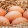 The eggs which are laid out in a basket with hay. — Stock Photo #70477405