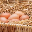 The eggs which are laid out in a basket with hay. — Stock Photo #70477315
