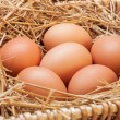 The eggs which are laid out in a basket with hay. — Stock Photo #70477407