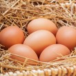 The eggs which are laid out in a basket with hay. — Stock Photo #70477409