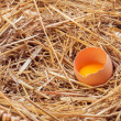 The eggs which are laid out in a basket with hay. — Stock Photo #70477477