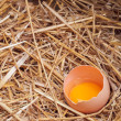 The eggs which are laid out in a basket with hay. — Stock Photo #70477535