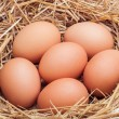 The eggs which are laid out in a basket with hay. — Stock Photo #70477575