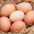 The eggs which are laid out in a basket with hay. — Stock Photo #70477587