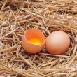 The eggs which are laid out in a basket with hay. — Stock Photo #70477633