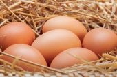 The eggs which are laid out in a basket with hay. — Stock Photo