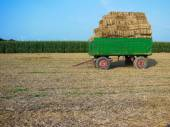 Hayride Horizontal — Stock Photo