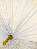 Bed Canopy — Stock Photo