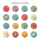 Organ long shadow icons — Stock Vector