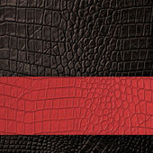 Brown Leather and red space background and texture  — Stock Photo