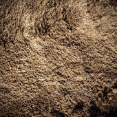 Soil texture and background detail close up — Stok fotoğraf